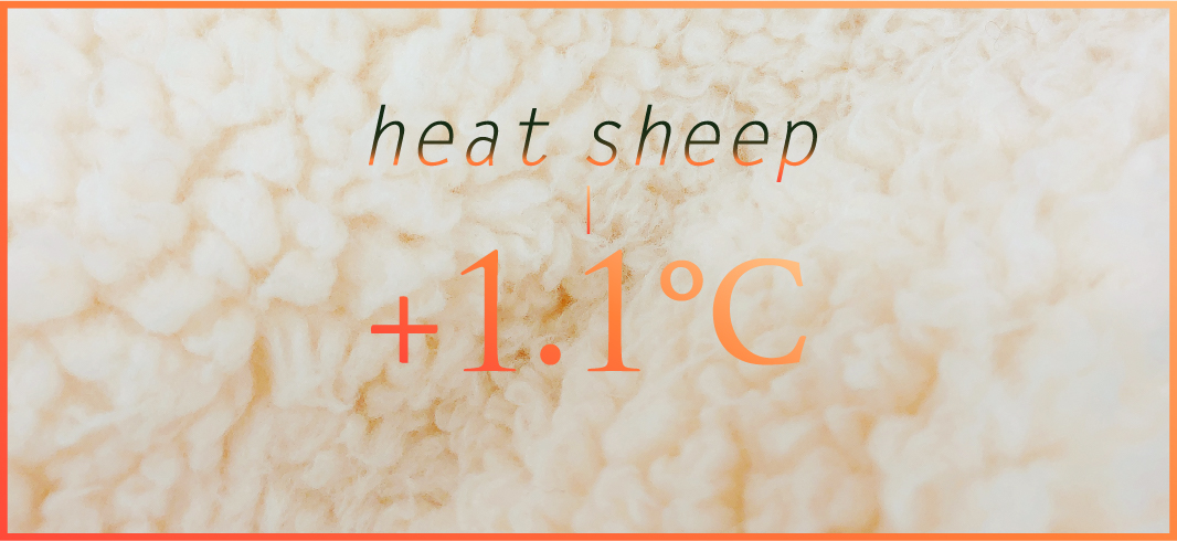 heat sheep +1.1℃