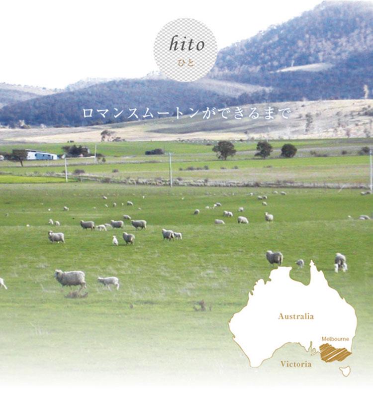 mouton_hito
