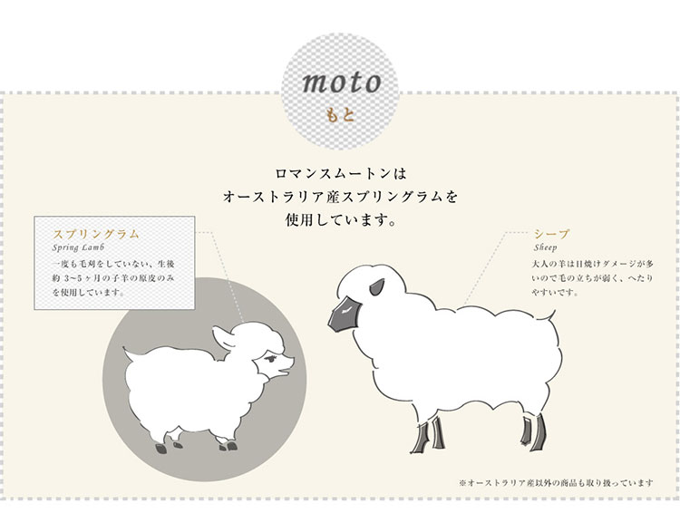mouton_moto